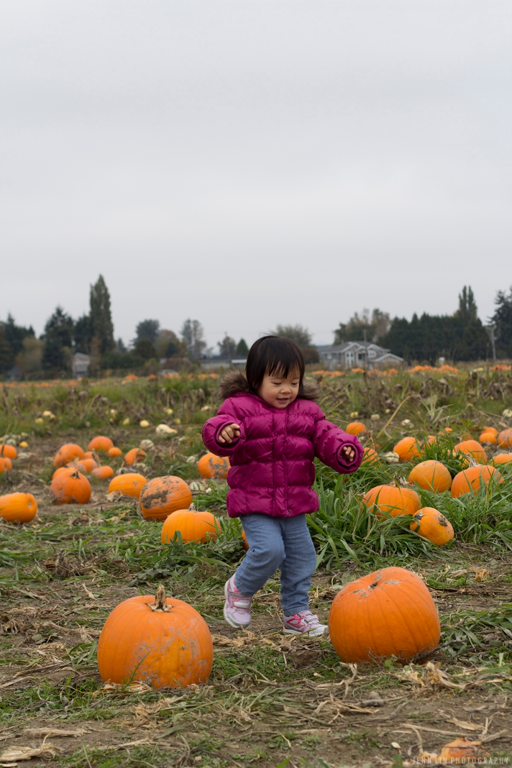 Pumpkin Patch by Jenn Lin Photography_5337