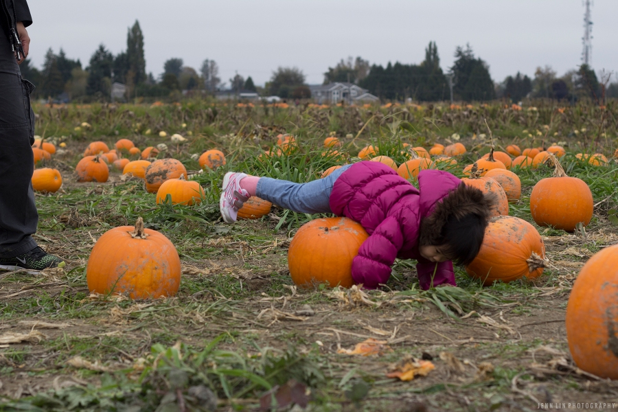 Pumpkin Patch by Jenn Lin Photography_5339
