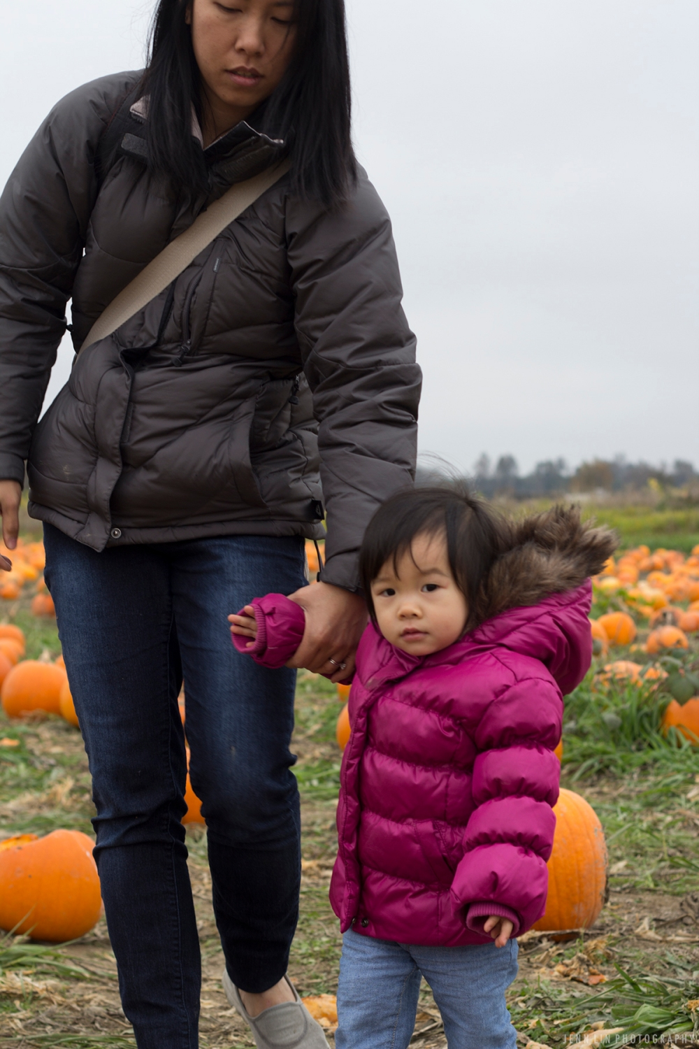 Pumpkin Patch by Jenn Lin Photography_5347
