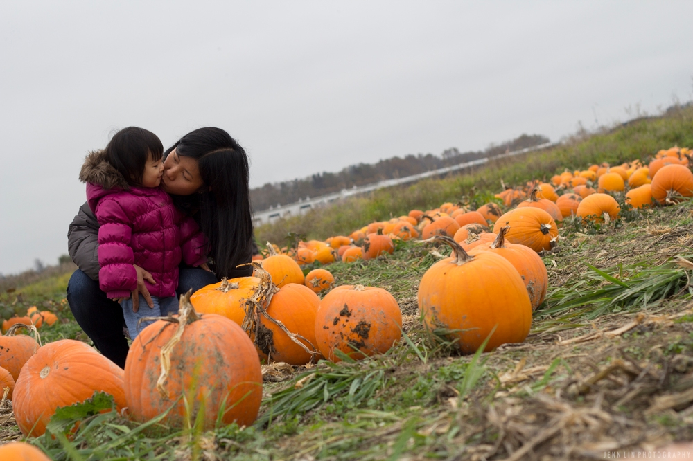 Pumpkin Patch by Jenn Lin Photography_5357