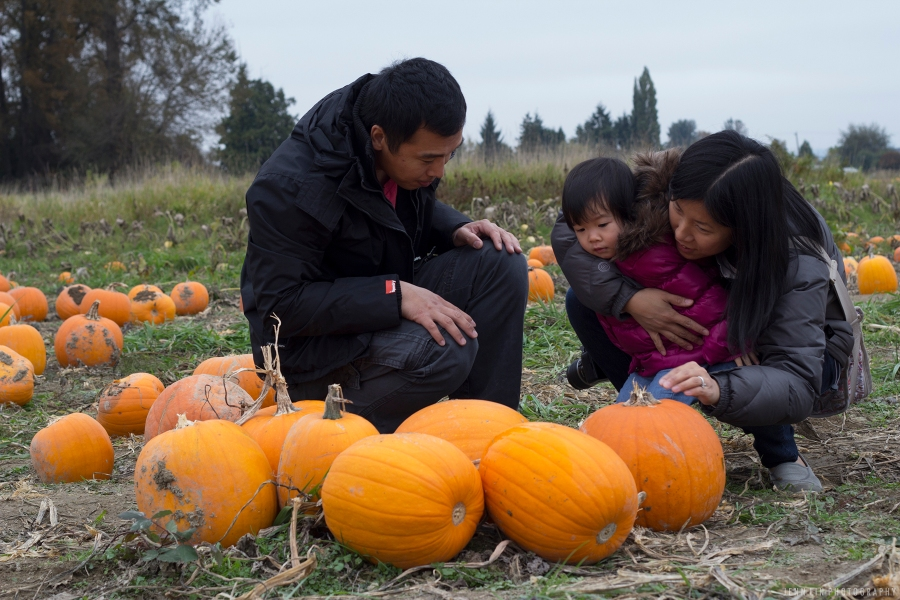 Pumpkin Patch by Jenn Lin Photography_5367