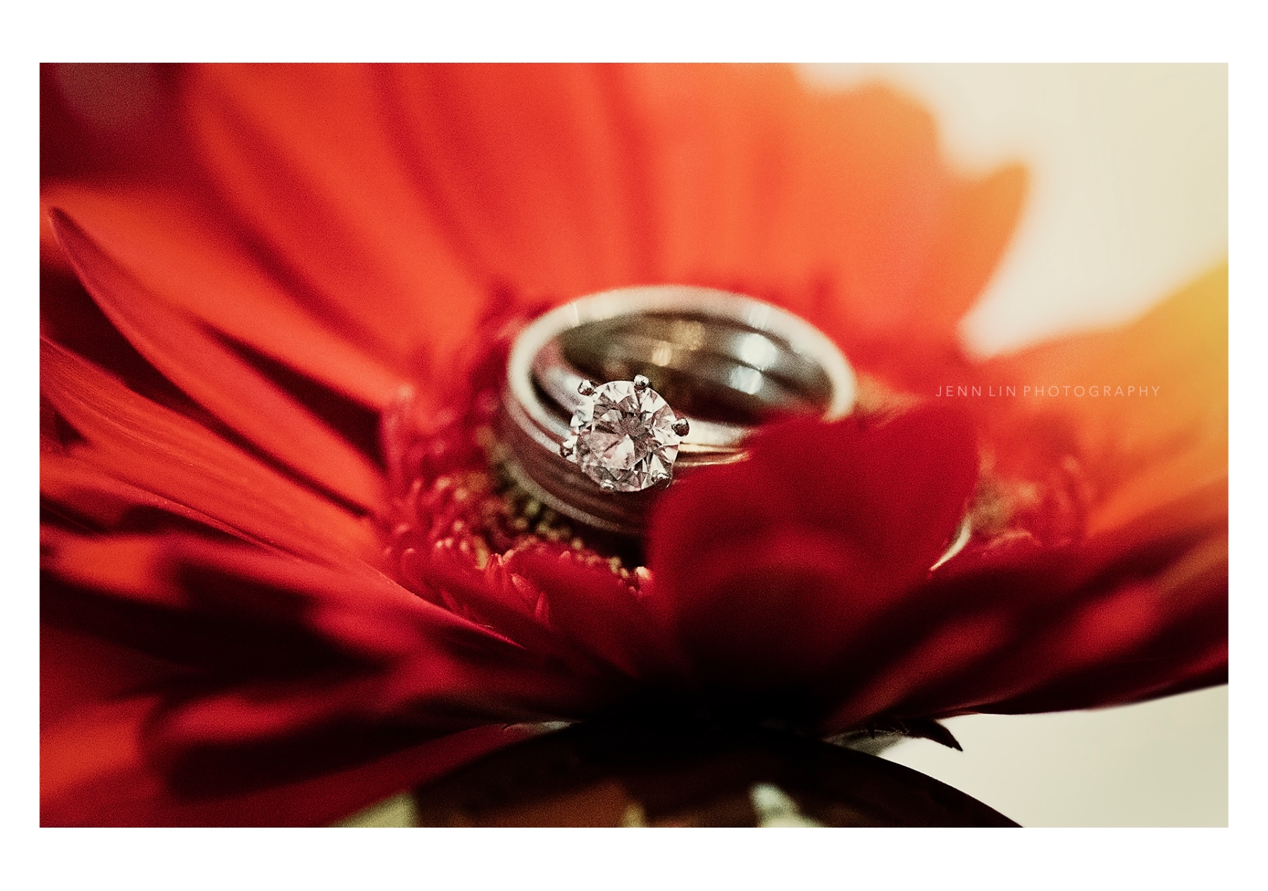 Ring on Red Petals