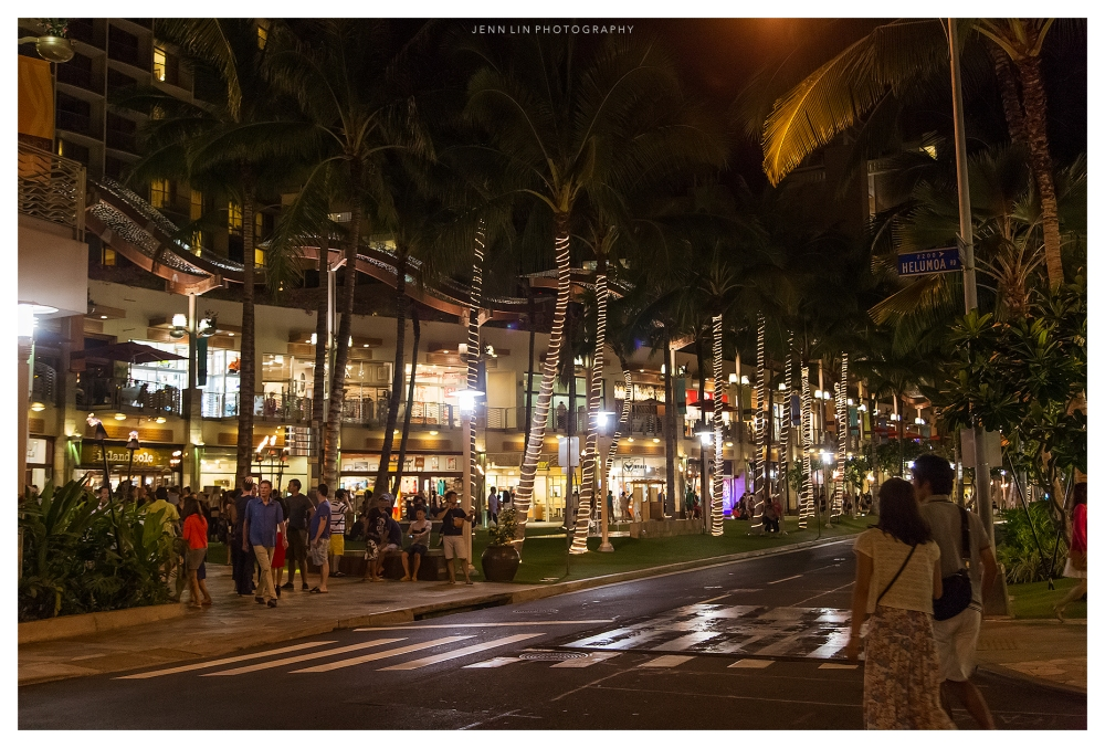 Honolulu-311-©-2015-Jenn-Lin